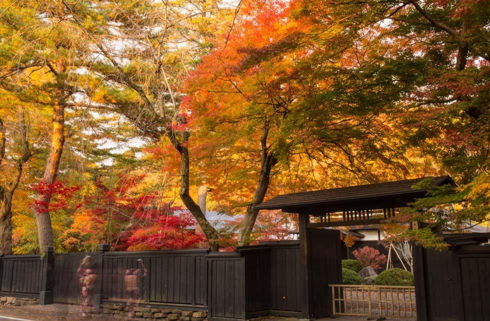 角館の秋とその周辺の見どころ