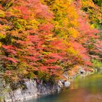 紅葉から落葉へ変わった葛根田渓谷で味わう絶品そば「玄武洞茶屋」