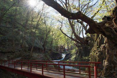 龍泉洞の水が流れる清水川