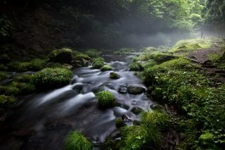 にかほ市の「元滝伏流水」は小さな奥入瀬渓流だ