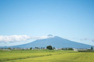 朝採れの嶽きみを求めて津軽半島?へドライブ
