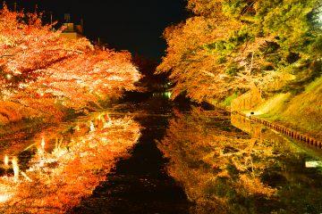 弘前城ライトアップ