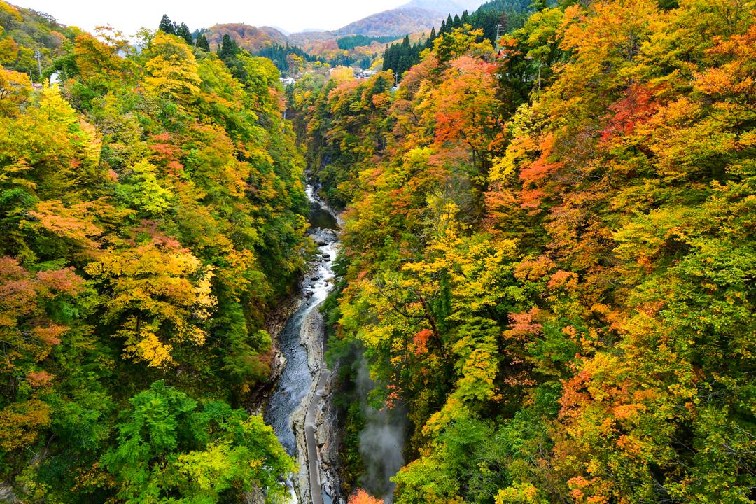 湯沢市 紅葉の始まった小安峡